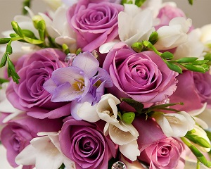 violet-flowers-roses-bouquet_1280x1024